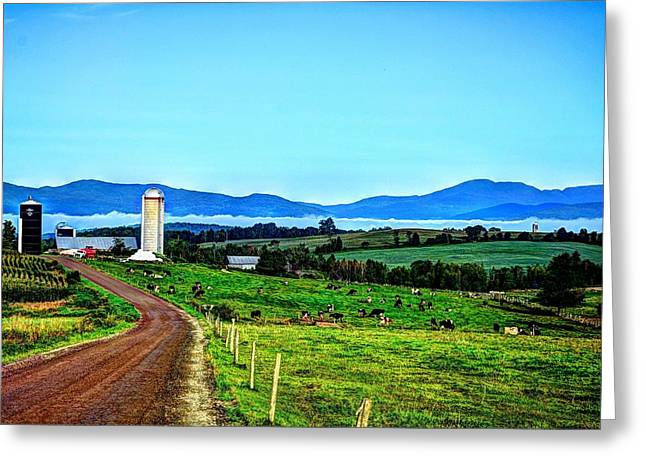 North Troy Dairy Greeting Card by John Nielsen