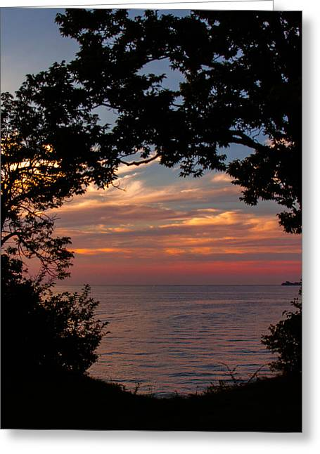 Northern Glow Greeting Card by Haren Images- Kriss Haren