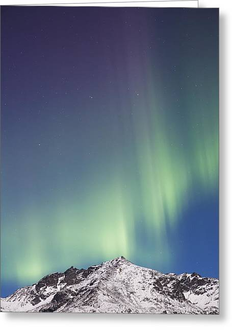 Northern Lights Above The Snow Covered Greeting Card by Kevin Smith