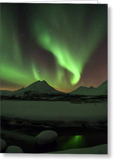 Northern Lights Over Frozen Lake Troms Greeting Card by Sandra Schaenzer