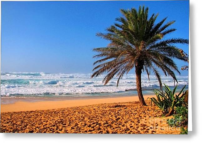 Greeting Card featuring the photograph Northshore Beach by Kristine Merc