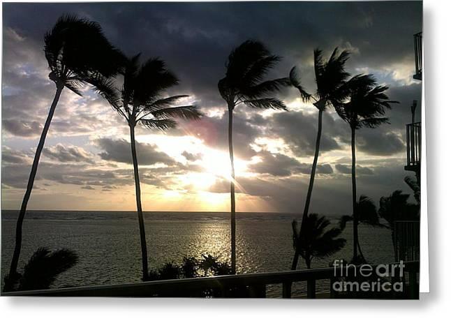 Northshore Sunrise Greeting Card by Brigitte Emme