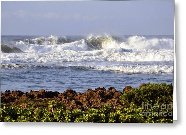 Greeting Card featuring the photograph Northshore Surf by Gina Savage