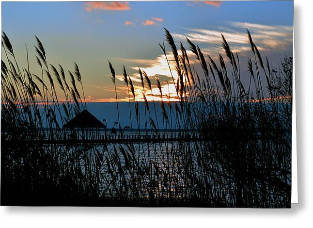 Greeting Card featuring the photograph Ocean City Sunset At Northside Park by Bill Swartwout