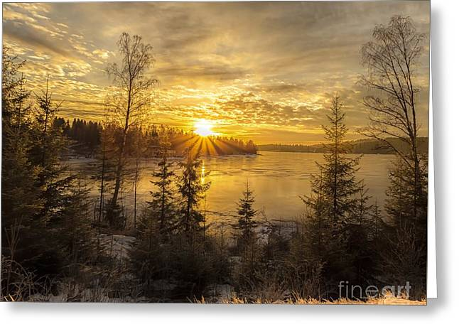 Norway Hedmark Greeting Card by Rose-Maries Pictures
