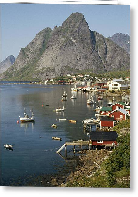 Norwegian Fjord And  Traditional Greeting Card by Tui De Roy