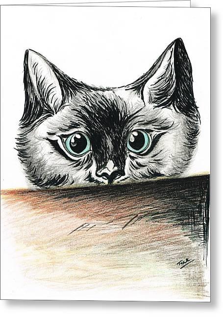 Cat- Nosey Boy Greeting Card