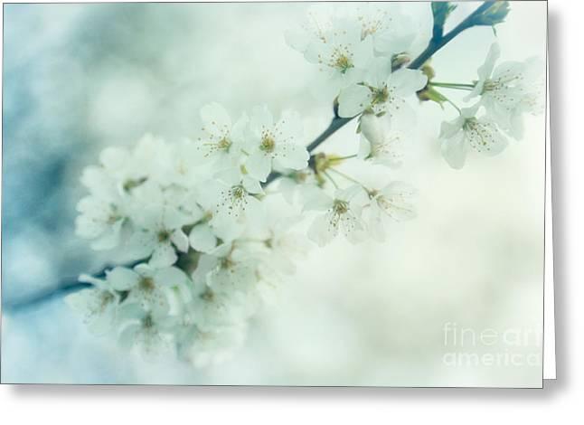 Nostalgic Blossom Greeting Card by Natalie Kinnear