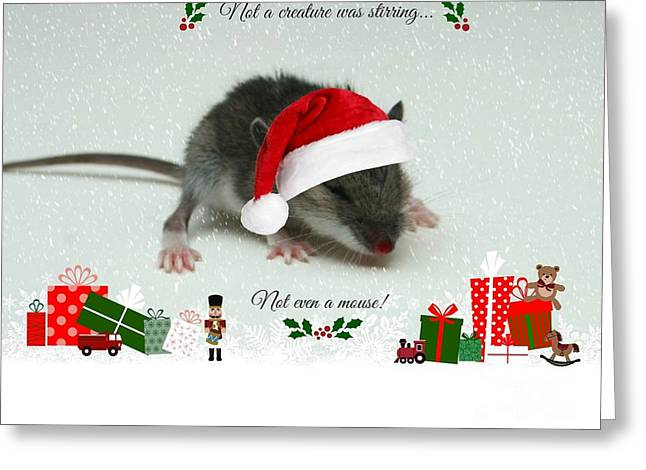 Not A Creature Was Stirring Greeting Card by Barbara S Nickerson