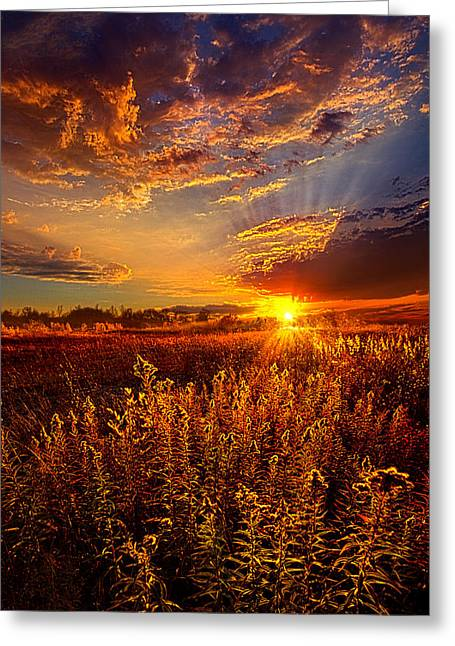 Not Thinking About Tomorrow Greeting Card by Phil Koch