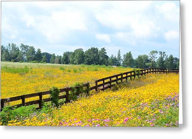 Notch In The Fence Wild Flowers Greeting Card