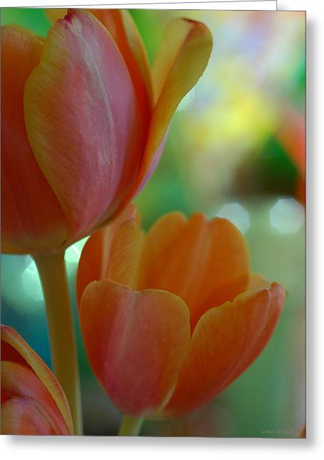 Nothing As Sweet As Your Tulips Greeting Card by Donna Blackhall
