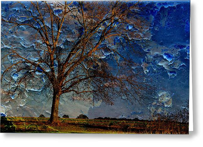 Nothing But Blue Skies Greeting Card by Jan Amiss Photography