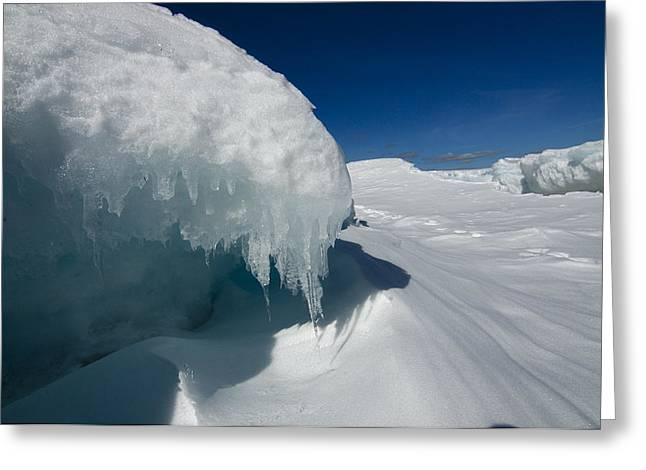 Nothing But Ice Greeting Card by Sandra Updyke