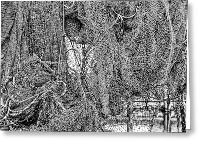 Nothing But Net Black And White Greeting Card by JC Findley