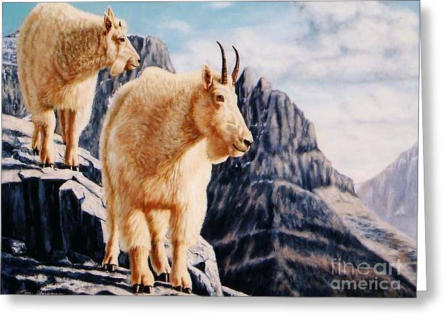 Notice On High Mountain Goats Greeting Card by Tom Chapman