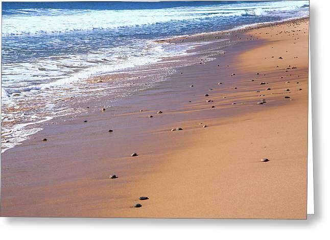 Nova Scotia, Beach Near The Cabot Greeting Card