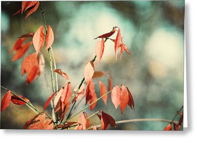 November Day Greeting Card by Carolyn Cochrane