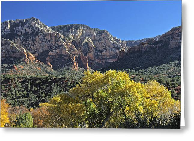 Greeting Card featuring the photograph November In Sedona by Penny Meyers