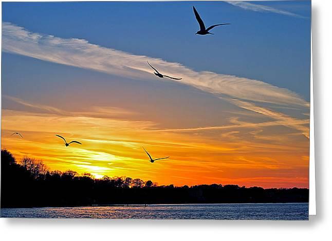November Sunset Ia Greeting Card