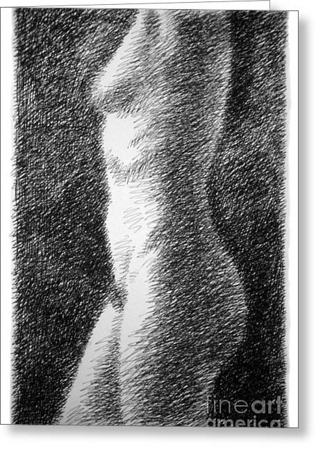 Nude Female Torso Drawings 6 Greeting Card by Gordon Punt
