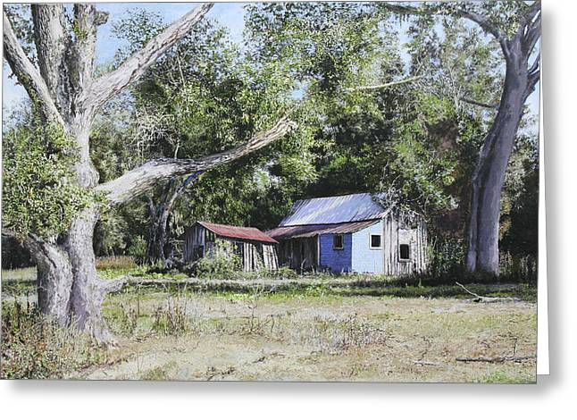 Nude Landscape Chiefland Florida Greeting Card by Richard Barone