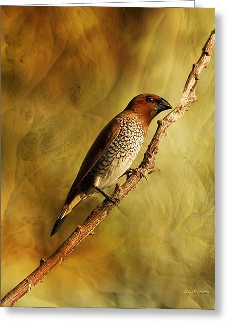 Nutmeg Mannikin Aka Spice Finch Greeting Card by Angela A Stanton