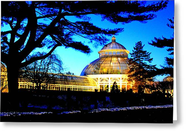 Greeting Card featuring the photograph Nybg Winter Scene by Aurelio Zucco