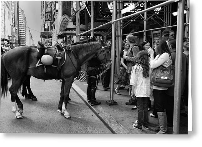 Nyc Police Horse Greeting Card by Mark Jordan