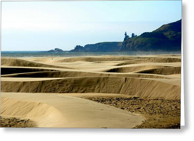 Nye Dunes Greeting Card by Mamie Gunning