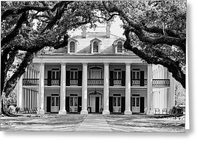 Oak Alley Mansion Black And White Greeting Card