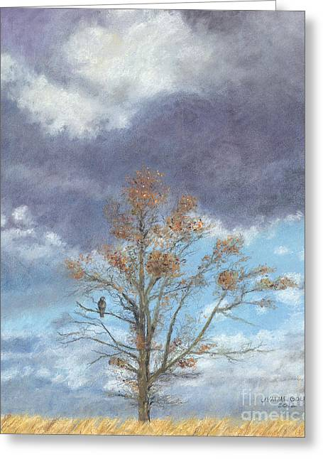 Oak And Clouds Greeting Card by Jymme Golden
