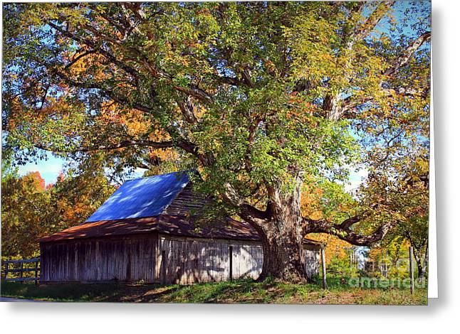 Oak Barn And Oak Tree In Autumn Greeting Card