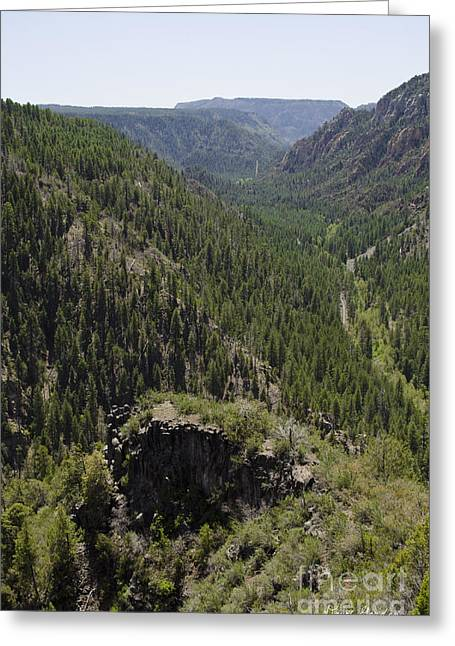 Oak Creek Canyon Overlook Greeting Card by David Gordon