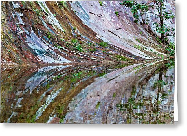 Greeting Card featuring the photograph Oak Creek Canyon Reflection by Mae Wertz