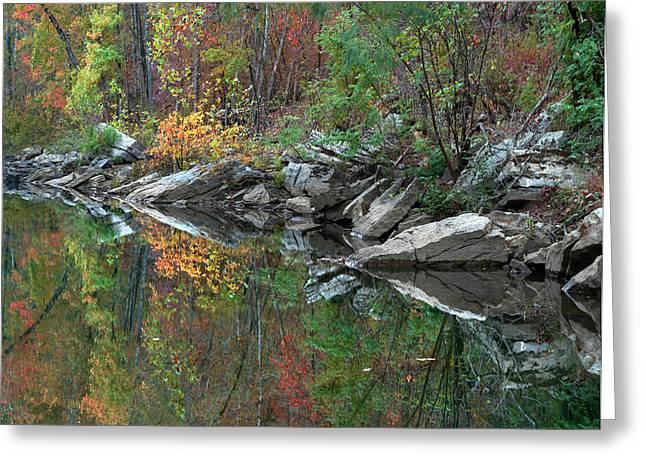 Oak-hickory Forest Along Lee Creek Greeting Card