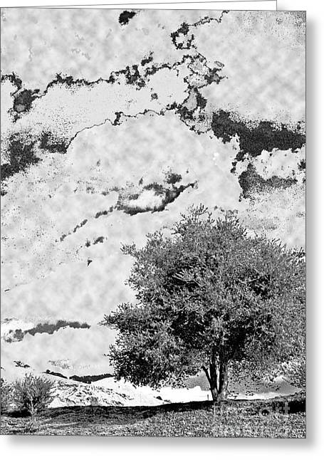 Greeting Card featuring the photograph Oak On A Hill Blk And Wht by Gary Brandes