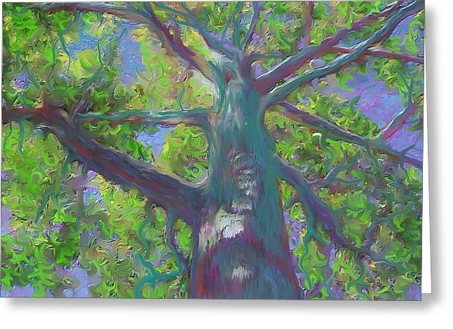 Oak Tree 1 Greeting Card by Hidden  Mountain