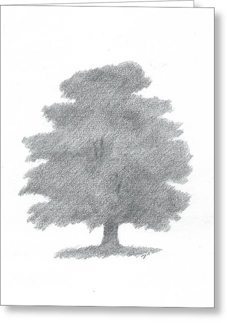Oak Tree Drawing Number Six Greeting Card by Alan Daysh