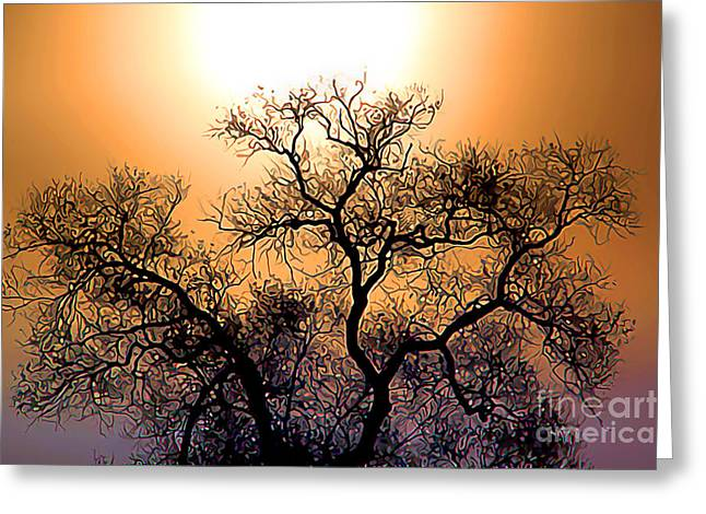Oak Tree In The Early Morning Greeting Card