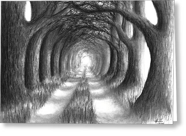 Oak Tree Lane Greeting Card by Adam Vereecke