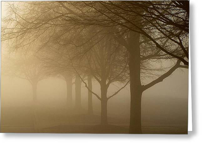 Greeting Card featuring the photograph Oaks In The Fog by Greg Simmons