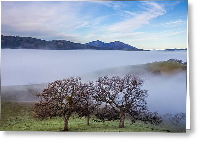 Oaks On A Hill And Mt. Diablo Greeting Card