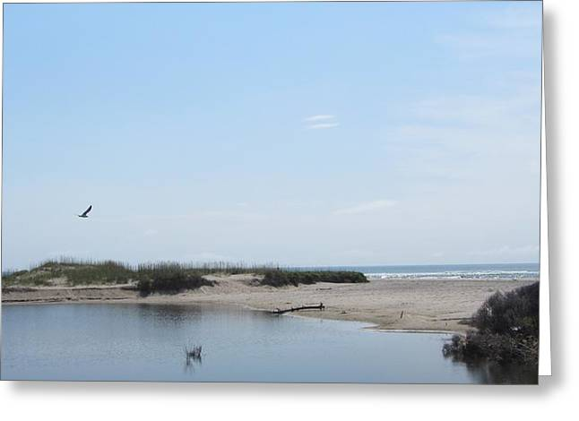 Greeting Card featuring the photograph Ocean And Sound by Cathy Lindsey