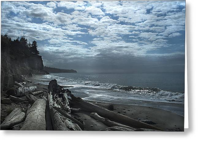Ocean Beach Pacific Northwest Greeting Card by Yulia Kazansky