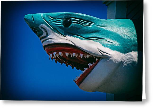 Ocean City Shark Attack Greeting Card