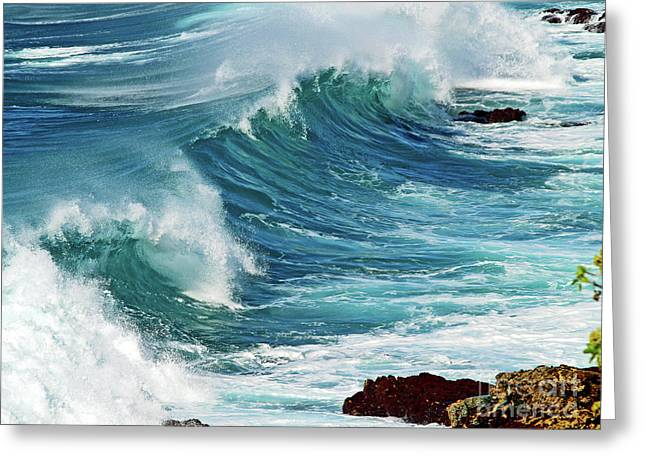 Ocean Majesty Greeting Card by Patricia Griffin Brett