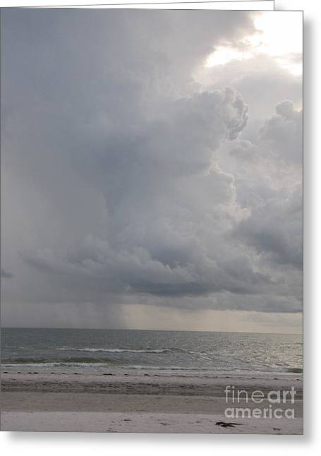 Ocean Rain Greeting Card by Gayle Melges