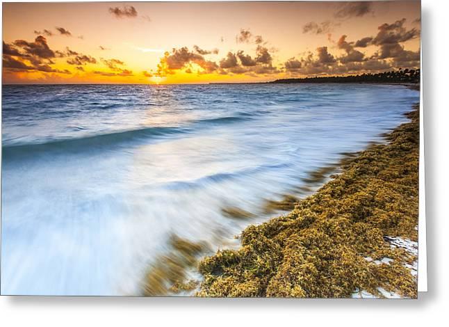 Ocean Retreat Greeting Card by Sebastian Musial