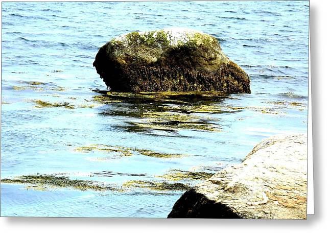 Ocean Rock Greeting Card by Dancingfire Brenda Morrell
